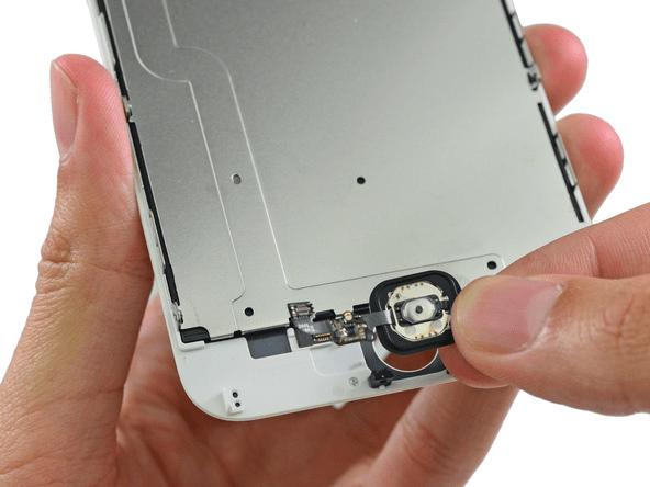 iphone-6-plus-teardown-step-8.2